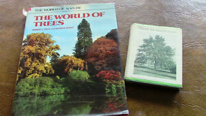 Two Books: The World of Trees and Trees We Should Know Kitchener / Waterloo Kitchener Area image 1