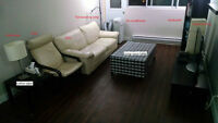 3 1/2 Downtown sublease July 01-Sept 30/ furniture sale