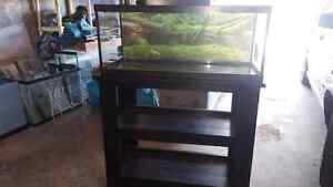 23 gallon tank with stand