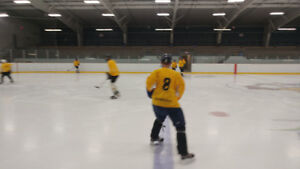 Adult fun Hockey