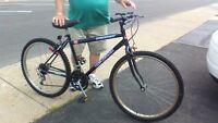 bicycle de montagne de femme