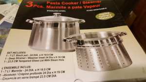 Paster cooker