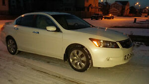 2010 Honda Accord Exl Other