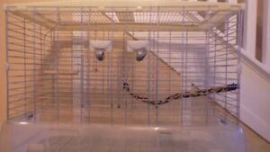 LARGE BIRD CAGE WITH PERCHES