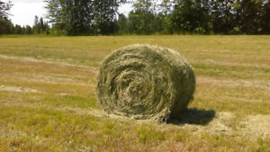 2017 Round bales for sale