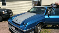 1983 SHELBY Charger