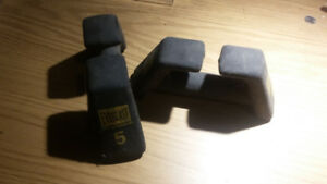 Two 5 lbs Everlast steel  dumbells