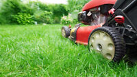 Lawn Mowing!!