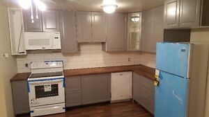 Newly Renovated 3 Bdr 1.5 Bath Townhouse