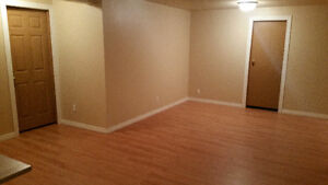 Looking for roommate in a large basement near WEM