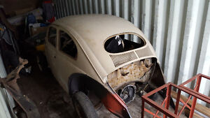 1955 VW Beetle Oval Window - very rare !