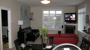 Downtown 2 bedroom furnished, newer building