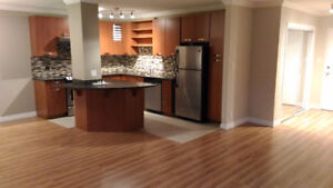 Large One Bedroom Apartment (Downtown - West End)