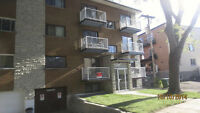 Renovated & Spacious 41/2 ***1 month free***