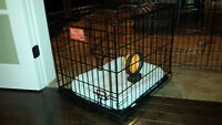 Single Door Folding Dog Crate – NEARLY NEW - only 3 weeks old