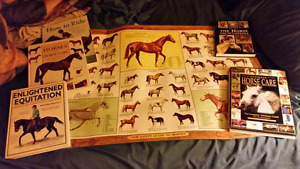 Horse books and poster