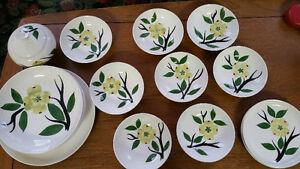 Gorgeous set of Mid Century Blue Ridge Pottery dishes