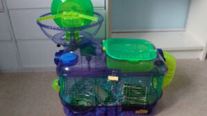Male gerbils with cages FREE!!!!!!!