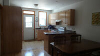 Spacious 1st floor apt with parking in the Plateau