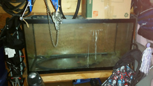 90g fish tank for sale