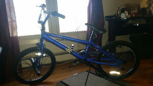 Selling a BMX Sims oath bike $ 200.obo calls only please