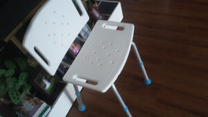 bath seat and raised toilet seat with rails