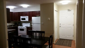 DOWNTOWN EXECUTIVE 2BED2BATH FULLY FURNISHED EXECUTIVE CONDO