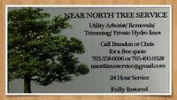 Near North Tree Service