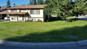 Southern Exposure   ☆Level Lot☆ Salmon Arm