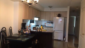 Bright Clean Room for Rent in  2 bedroom townhouse - square one