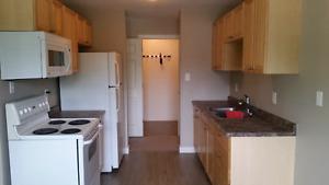 Spacious 1100 Sq Ft 3 Bedroom Suite in 4 Plex