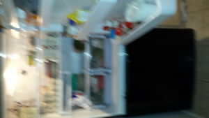 Samsung refrigerator Cambridge Kitchener Area image 1