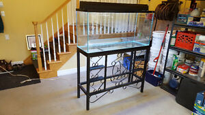 80 Gallon Tall Aquarium, With Unique Metal Stand & Accessories