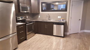 1 bedroom basment suite in Spruce Grove