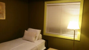 room for nightly rate available for short  term renter Edmonton Edmonton Area image 7