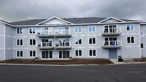 Upscale Brand new 2 bedroom in Gananoque for rent
