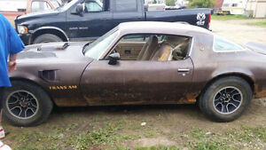 Looking for a 1973 to 1977 Pontiac  Firebird Trans Am Project