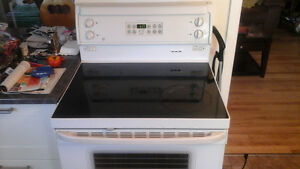 Self cleaning  stove
