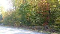 ♡☆♡Georgian Bay Flat Building lot-5 min.walk to Sandy Beach☆♡♡