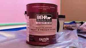Behr Premium Bubble Gum Pink Paint