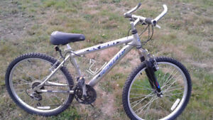 21 Speed SX 200 Pacific Youth Mountain Bike
