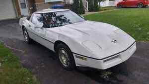 Corvette 84, targa
