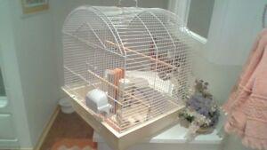 Cage d' oiseaux.