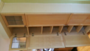 Maple Kitchen Pantry with doors