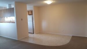 Pay no rent for December! Clean, bright 2 bedroom suite