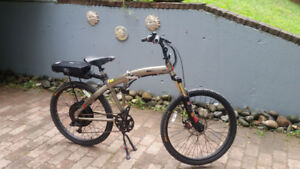 Prodeco Storm electric bicycle