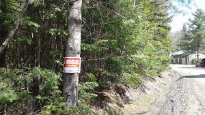Terrain àSaint-Denis de Brompton 1.52 acre à vendre(non taxable)