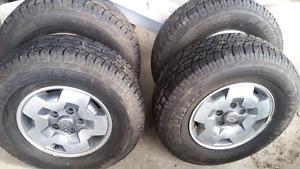 Chevy  blazer  S 10 gmc  Jimmy  Sonoma