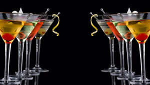 Experienced bartenders for hire. London Ontario image 1