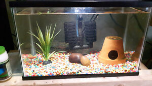 5 gal tank with led lights filter air pump cray fish complete se